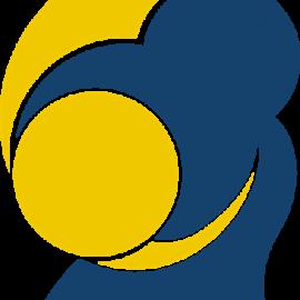 Svensk Judo Logotype